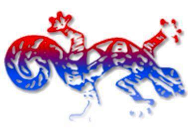 APAE Haïti Logo